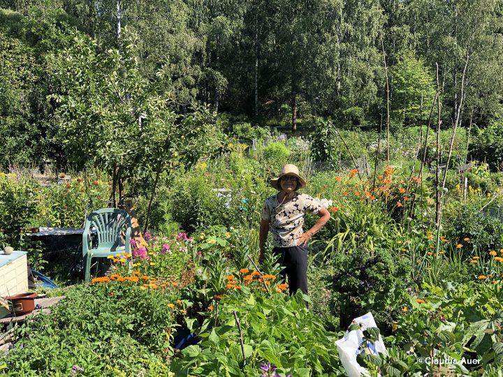 第一回 自然が近い都市、ヘルシンキ【後編】の画像